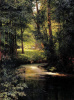 A forest stream. In the spring