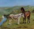 Пони и осел в горном пейзаже