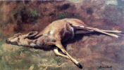 A forest dweller. The picture of the dead deer