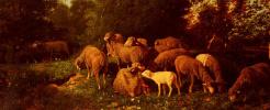 Charles-Emile Jacques. Sheep