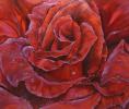 Душа розы