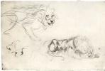 Эжен Делакруа. Лист с этюдами льва