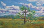 Лариса Луканева. Дерево в степи