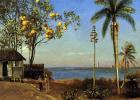 Альберт Бирштадт. Вид на Багамах