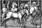 Ханс Бальдунг. Жеребец и брыкающаяся кобыла среди диких лошадей в лесу
