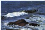 Ю. Пуджиес. Тоскующий островок