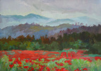 Mist over the poppy field