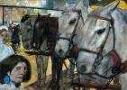 Лошади на плотине