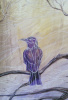 Фиолетовый ворон