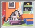 Dreams of cats 70