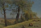 Альберт Бирштадт. Холмистый пейзаж. Калифорния