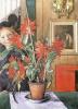 Britta cactus