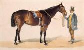 Луиджи Премацци. Лошадь под седлом и наездник