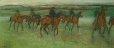 Exercising Racehorses