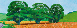 David Hockney. Three trees near Mixingale, spring
