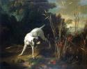 Собака на стойке перед куропаткой