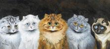 Пять кошек, Рыжий во главе