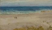 Аранжировка голубого и черного (Голубое море)