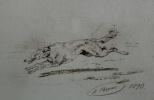 Hound. 1893