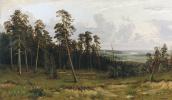Иван Иванович Шишкин. Богатый лог (Пихтовый лес на реке Каме)