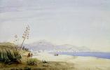 Жозеф Фрисеро. Вид залива Ангелов с острова Святой Елены