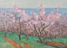 Almonds in bloom. 1955 69x50