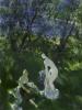 Купальщицы у реки