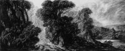 Королевский лес