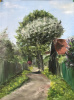 Flowering pear. Lanes of Rostov-Great