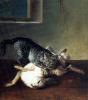 Кот и мертвый заяц