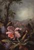 Цветки орхидеи и пассифлоры и колибри