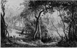 Шарль-Франсуа Добиньи. Фруктовый сад в Вальмондуа
