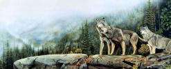 Жюль Бушар. Канадский волк
