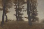 Вильгельм Хаммерсхёй. Стволы деревьев. Арресодель близ Фредериксверка, Северная Зеландия