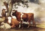 Паулюс Поттер. Коровы и пастух