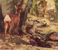An enclosure for ROE deer at the stream Fountain of joy. Detail