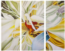 Gentle lily. Triptych