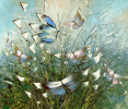 Butterflies and grass