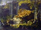 На Валааме. Камни в лесу