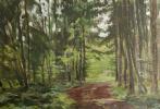 Andrey Noarov. Дорога в лесу