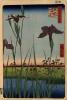 "Irises in Horikiri. The series ""100 famous views of Edo"""