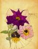 Цветочный мотив 29