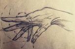 Christina Steinberg. Hand