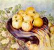 Bogdanovskaya apples. Etude