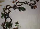 Ветвь винограда