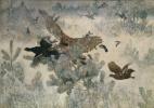 Сова и птицы