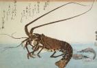 """Утагава Хиросигэ. Омар и креветки. Серия """"Рыбы"""""""