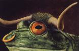 Уилл Буллас. Одинокая лягушка