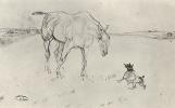 Анри де Тулуз-Лотрек. Лошадь и Колли