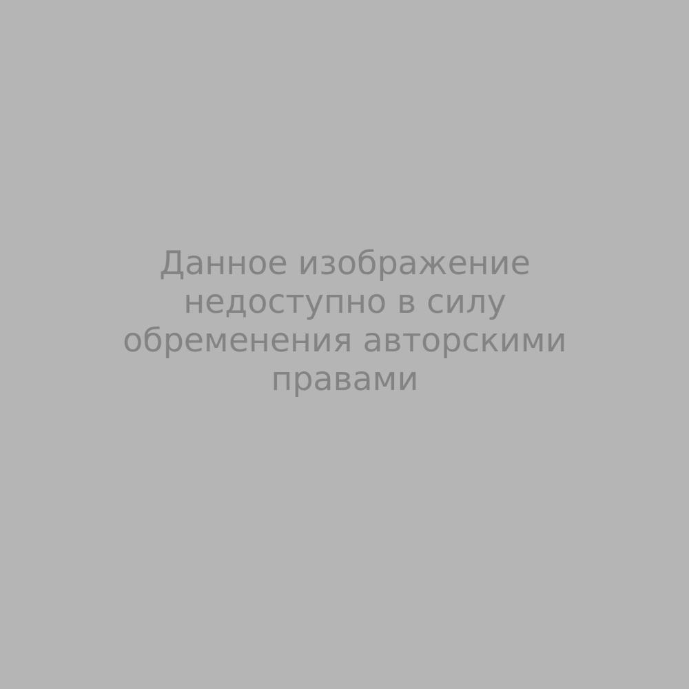 Наталья Сергеевна Гончарова. Эскиз костюма для оперы-балета «Золотой петушок» Н.А. Римского-Корсакова